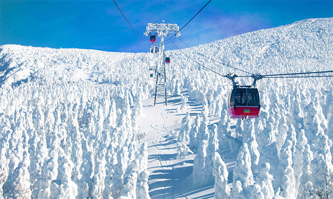 ski-04-1.jpg