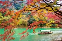 京都嵐山楓紅