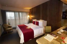 台北君品酒店 (2)