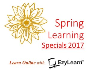 EzyLearn Website Ads for SPRING LEARNING - cheap, discounted online courses in Xero, MYOB, Excel Social Media Marketing