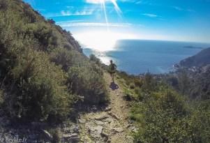 Trail Eze 2015-16