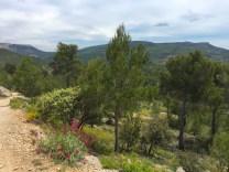 forêt de Hautes Roques