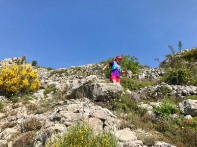 Descente du plateau de Cavillore