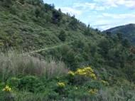 vers les ruines de Chateauneuf