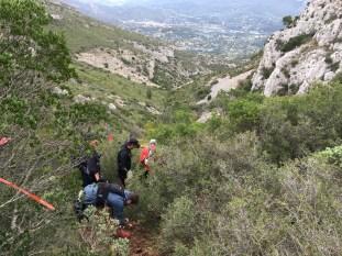 Trail de Pichauris, la broussaille ça pique !