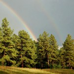 Double rainbow with trees
