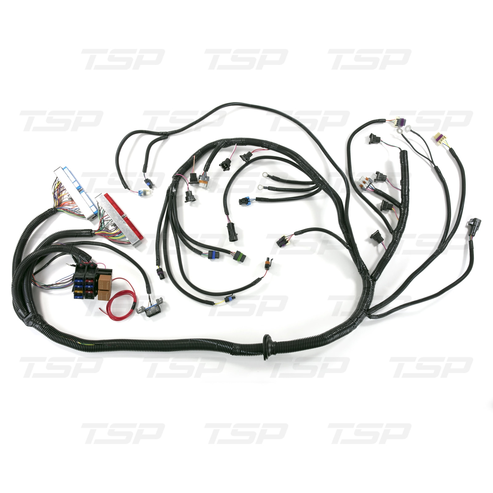 Standalone Wiring Harness For Drive By Cable Ls1 With
