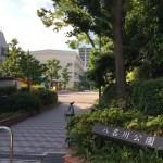【八名川公園】八名川小学校に隣接した四季折々の植物が楽しめる新大橋3丁目の公園