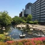 【仙台堀川公園】「区民の森」をテーマにした全長3.7kmもある都内最大の親水公園