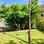【木場二丁目児童遊園】平久川遊歩道の散策ついでに立ち寄れる木場2丁目の児童遊園