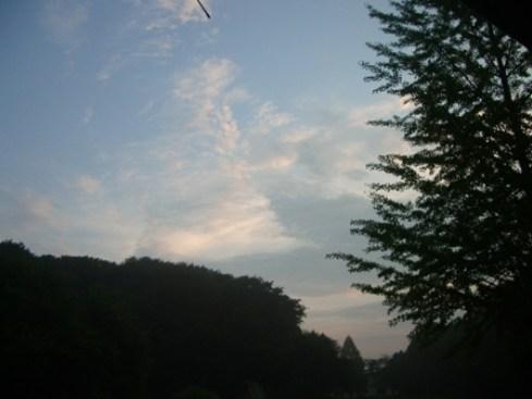 少年の森秋空画像
