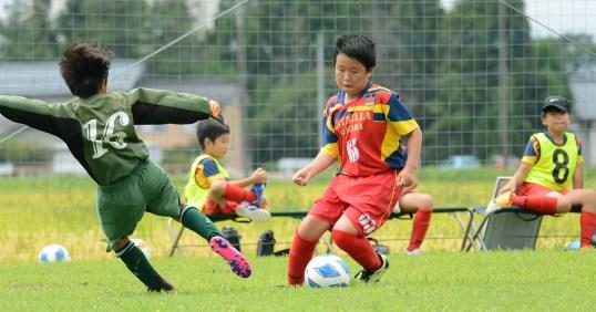 第29回新潟県U-11サッカー大会中越地区県央ブロック予選