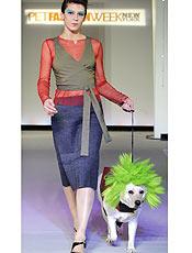 Semana da moda canina do Japão aposta no luxo para as mascotes