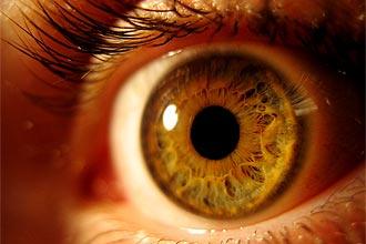 """Austrália apresentou nesta terça-feira (30) um protótipo de  """"olho biônico"""", que terá a capacidade de devolver visão a  cegos"""