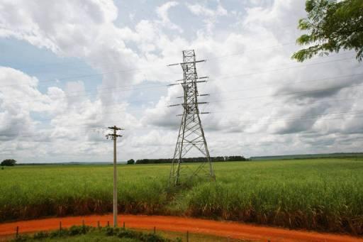 Plantação de cana próxima a rede de transmissão de energia