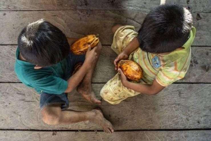 crianças com frutos