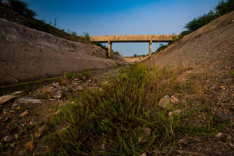 Canal da transposição abandonado, com pouca água e tomado por pasto
