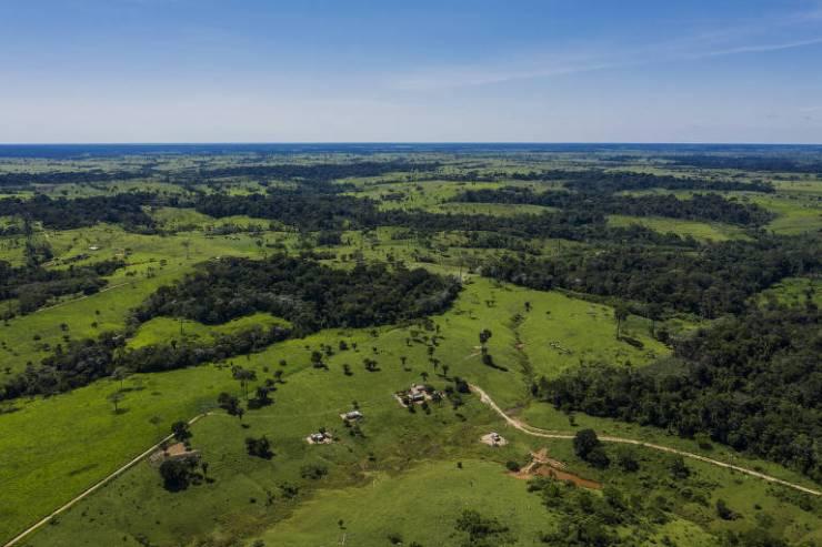 Área desmatada dentro da Reserva Extrativista Chico Mendes, em Xapuri (AC)