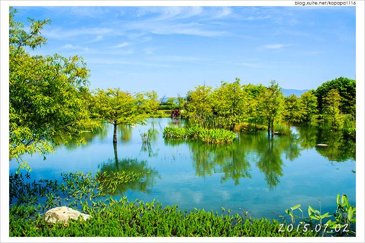 [花蓮吉安] 松湖驛站 | 落羽松湖畔旁的休息站, 美食美景一舉兩得!
