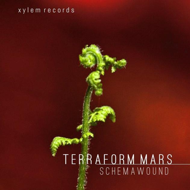 Schemawound - Terraform Mars