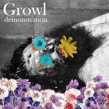 Demonstration cover art