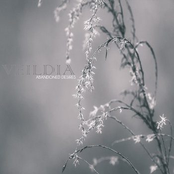 Veildia - Abandoned Desires