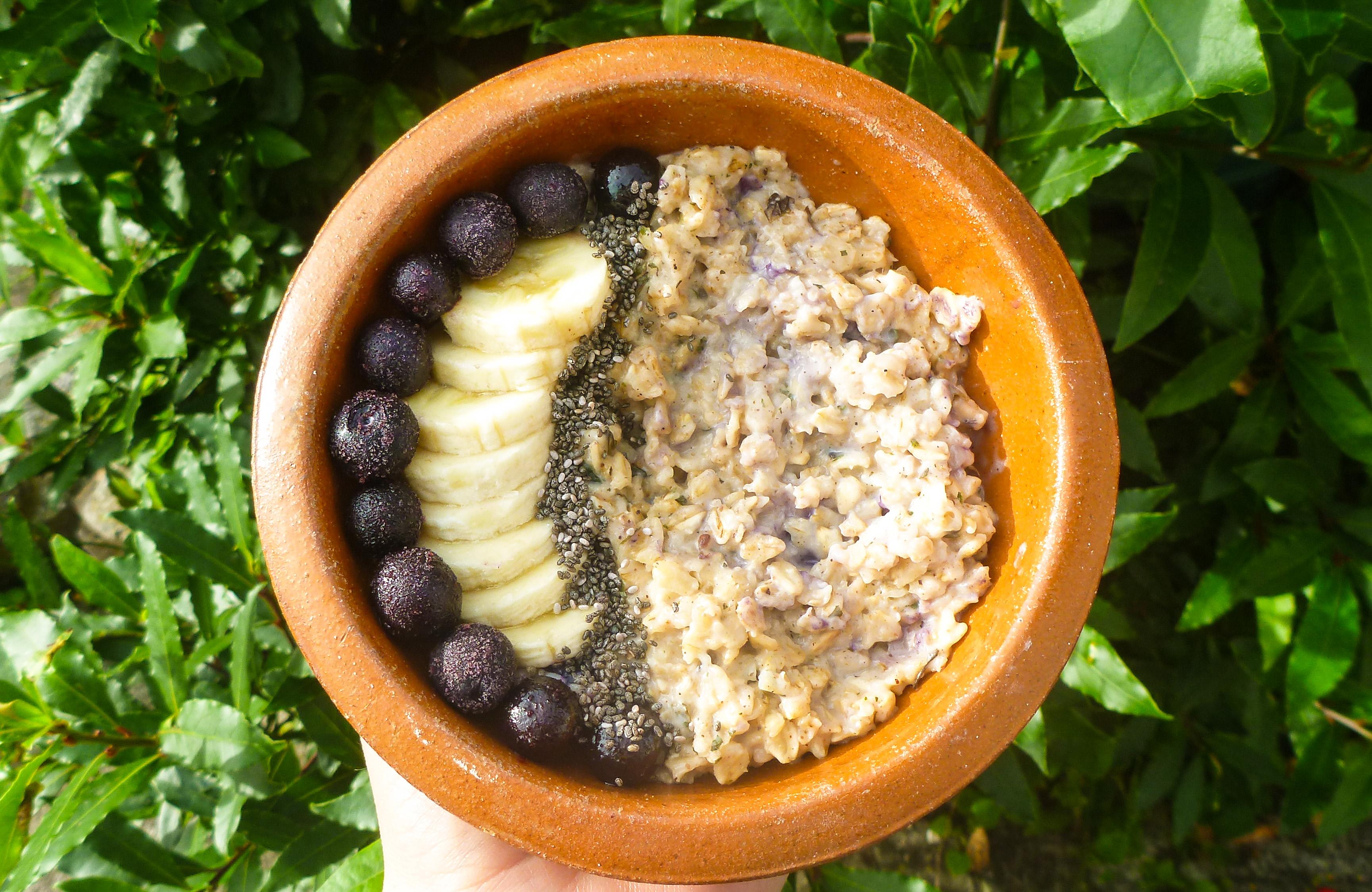 Lemon Balm & Blueberry Porridge for a Merry Heart