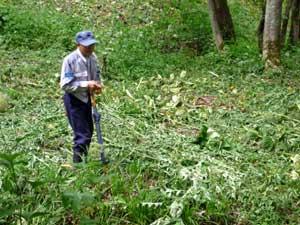 ニコルさんも一目置く森の番人であり、達人の松木さん(ニコルさんの著書には頻繁に登場)