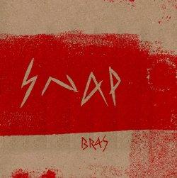 Snap artwork