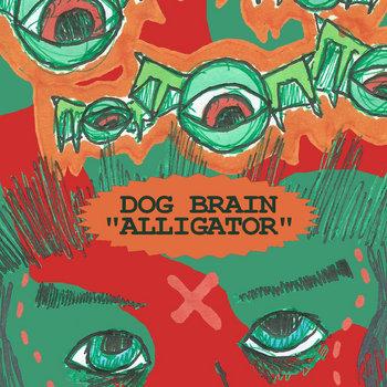 Alligator cover art