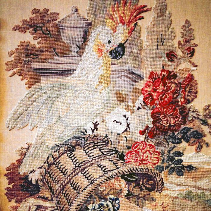 Bird cover art