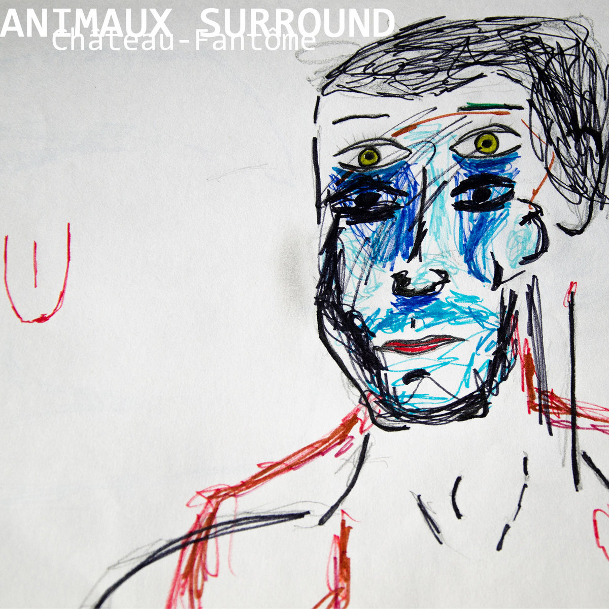 Animaux Surround artwork