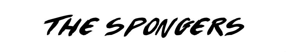 Hasil gambar untuk spongers