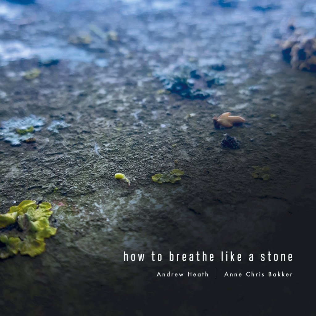 How To Breathe Like A Stone, by Andrew Heath & Anne Chris Bakker
