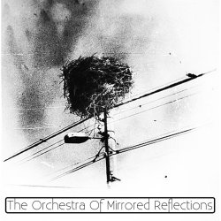 The Orchestra Of Mirrored Reflections artwork
