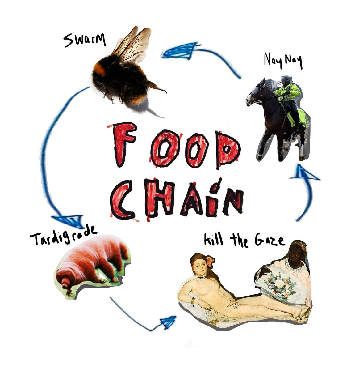 Food Chain Worksheet Labeling
