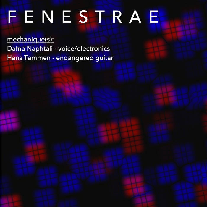 Dafna Naphtali and Hans Tammen – Mechanique​(​s) Fenestrae