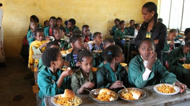 The Federal Government To Verify Number Of Primary Schools Presented By State Governments And  the National Bureau Of Statistics (nbs) For The National Home Grown School Feeding Programme (nhgsfp).