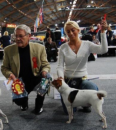 tjorven på norsk vinnrer utstilling i 2007