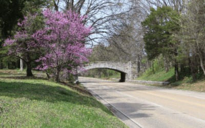 Call for Comments on the GW Parkway Study