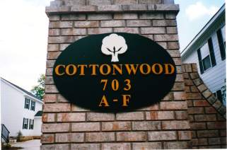 Cottonwood-min