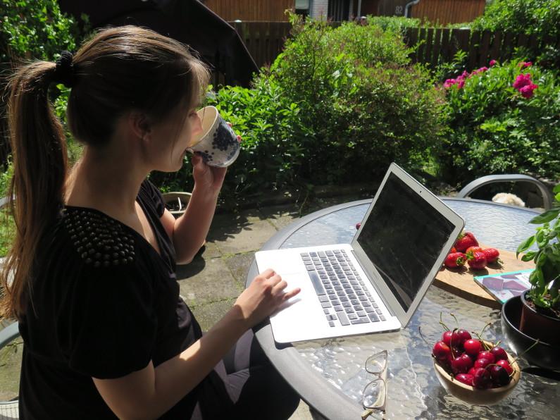 Bloggerstatus 2017