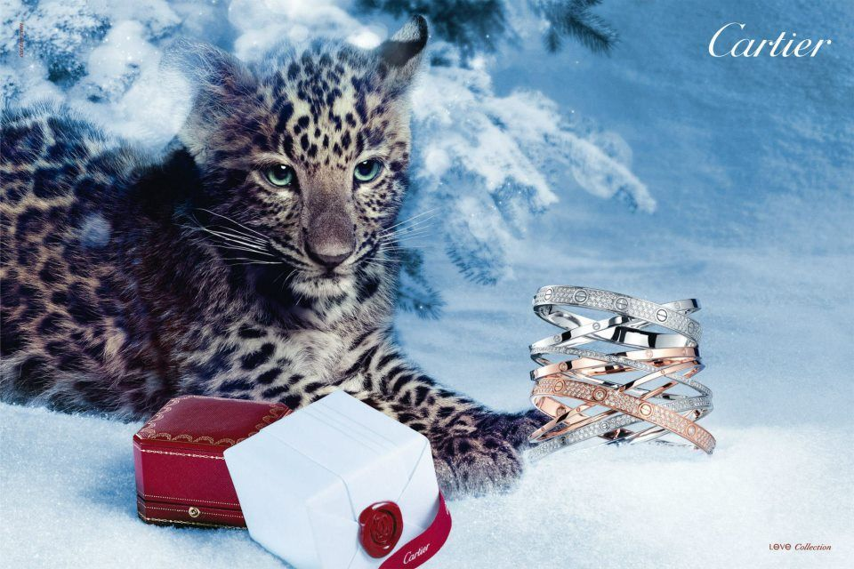 Cartier 2012 Winter Tale Holiday Campaign Fab Fashion Fix