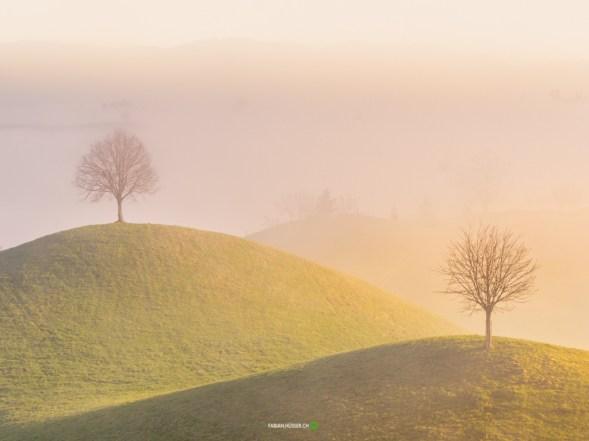 © Fabian Hüsser | Camera: Panasonic Lumix DMC-GX8 | Lens: | Settings f/8 | 1/160sec | ISO-200 |40mm | fabian.hüsser.ch