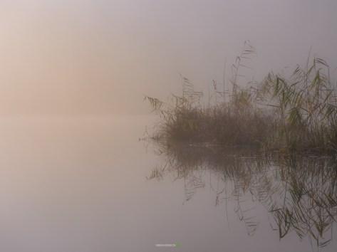 © Fabian Hüsser | Camera: Panasonic Lumix DC-GH5 | Lens: Lumix G VARIO 14-140/F3.5-5.6 | Settings f/8 | 1/800sec | ISO-200 |65mm | fabian.hüsser.ch