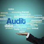 Guía Práctica para Hacer una Auditoria en Social Media