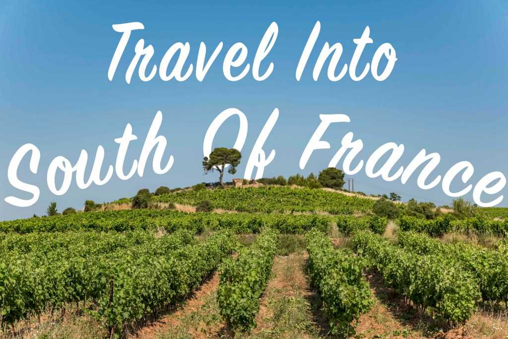 vinyard France