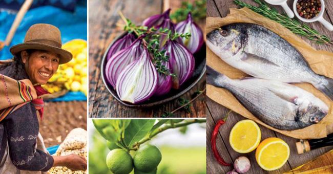 Livro sobre a gastronomia de 25 destinos