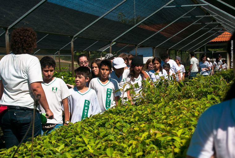 Viveiro de mudas do Centro de Experimentos durante visitas de estudantes