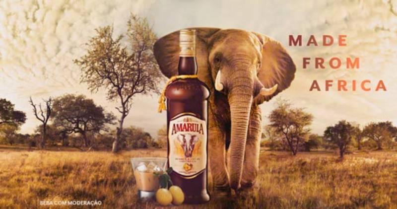 Aprenda a fazer drinques com o licor da marula, a fruta-símbolo da África do Sul